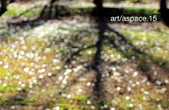 art aspace 2016 artistas colaboradores
